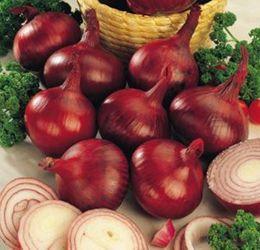 Rare Fresh Seeds Onion Red Baron Organic Russian Heirloom Vegetable Seed 100pcs S076