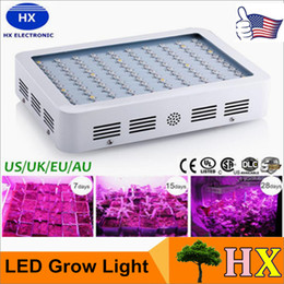 Wholesale High Power W W W Double Chip Full Spectrum LED Grow Light Panel Kit For Greenhouse Plant Veg AC V