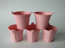 Metal Pails Mini Buckets Pink Succulents pot small flowers series iron pail   storage cup   tin box