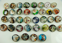 Wholesale fashion Mixed NOOSA Chunks charm high quality alloy Chunk Snap Button charm for Cat Series mm U