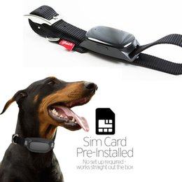 Wholesale Water resistant Dog Cat Animal Collar iOS Andriod APP for Mobile Device GPS SIM Card Pet Tracker Locator