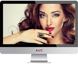 Wholesale 21 quot Brand New LED I3 CORE CPU All In One Computer Monitor Built In Wifi Windows7 GB GB Energy saving