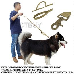 Wholesale Tactical Military D Nylon US Army Police Dog Training Leash Elastic pet Quick Release Tactical collars Duty for Perro colors