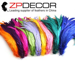 Wholesale Leading Supplier ZPDECOR cm inch Best Selling Good Quality Mix Colored Dyed Rooster Tail Feather