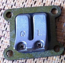 Wholesale 2 X Reed Valve Intake Valve Plate for Robin NB411 BG411 chainsaw trimmer weedeater cutter aftermarket parts