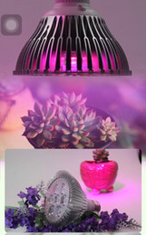 Highest efficent Hydroponic LED grow light , E27 plant grow light