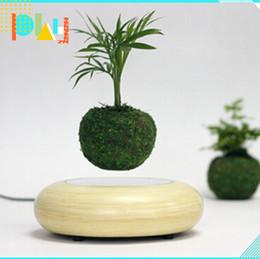 Flotteurs électroniques en Ligne-1 pcs pots de lévitation électroniques pots flottants pour bonsaïs