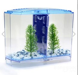 Wholesale BBT3 Twin Betta Bow Front Tank Aquarium Kit perfect starter kit for owners of a pair of Betta fish