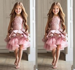 Gorgeous Pink Organza Ruched Girls Pageant Gowns 2017 Jewel Sleeveless Lace Applique Flower Girl Dresses For Wedding Children Party Dresses