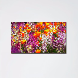 Wholesale Frameless Flowers Scene Paintings Living Room Canvas Wall Art Coloring Painting By Giclee Prints Oil Paintings Home Decoration