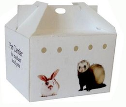 Wholesale factory direct hot sale competitive price best quality custom durable lightweight recyclable pp plastic small animal carrier box cages