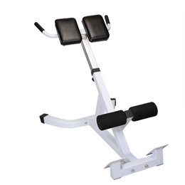 Wholesale Extension Hyperextension Back Exercise AB Bench Gym Abdominal Roman Chair