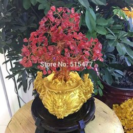 Wholesale natural red crystal lucky tree decoration living room wine cabinet pachira preopening decoration crafts gift