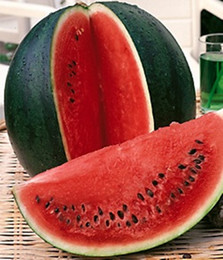 Seeds Watermelon Shuhar-Bebi-Sugar Baby Russian Heirloom Melon Seed 20pcs S042