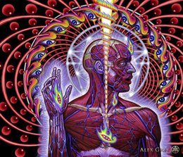 Wholesale Alex Grey Lateralus Tool surrealism canvas art print wall picture art silk poster X24 quot