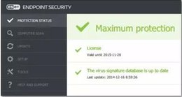 Wholesale ESET endpoint security antivirus EES EEA enterprise Business Edition activated the day experience version