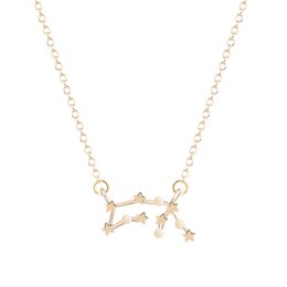 Wholesale 10pcs Gold Silver Aquarius Zodiac Sign Astrology Necklace Constellation Necklace Women fashion Pendant Necklace for Women