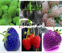8 Kinds Strawberry Seeds, 1 kind 200 Pcs, total 1600 Pcs,Green Purple Rose White Black Red BLUE Climbing Strawberry Seeds