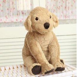 Свободный материал собаки для продажи-Собачка любимчика собаки лабрадора ребенка имитационная собака животных плюша 40 cm заполненная игрушка подарок дня рождения brinquedos для девушки девушок свободная перевозка груза