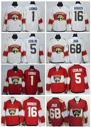 Wholesale 2017 Florida Panthers Jaromir Jagr Roberto Luongo Aleksander Barkov Aaron Ekblad Red white Best Quality Mix Order