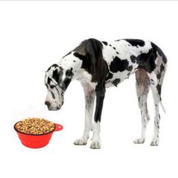 Wholesale Pet Traveling Feeder High Quality TPE ABS Plastic Dog Feeding Bowl Drink Water Bowl Dog Cat Pet Food Feeder Foldable Dog Bowl C