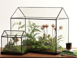 Wholesale Cool Mini Handmade Tabletop Glass Green Houses Small Arched Greenhouse Wardian Case Garden Terrarium