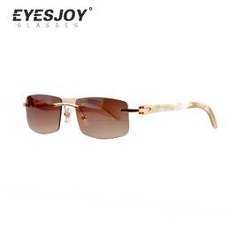 Wholesale Luxury Sun Glasses Designer Brand Sunglasses for Men Women White Buffalo Horn Rimless Driving Sunglasses Best Quality CT3524012