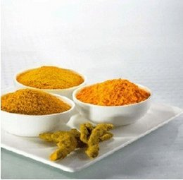 Wholesale High quality g oz Turmeric Root Extract powder Curcumin HPLC Turmeric powder GMP Factory