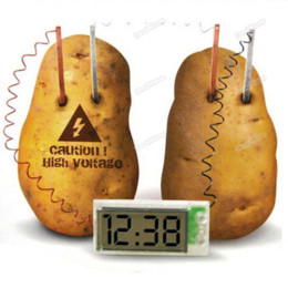 dealnium Satisfying! Potato Clock Novel Green Science Project Experiment Kit kids Lab Home School Toy Handmade!