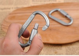 Wholesale Outdoor Safety Buckle Aluminum Alloy D Shape Climbing Button Carabiner Snap Clip Hook Keychain Keyring Carabiners Camping Hiking jy528