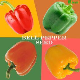 Wholesale Big Bell Pepper Seeds Planting Sweet Crisp Delicious Bonsai Home Garden