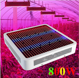 Wholesale 2016 new arrivals W Full Spectrum LED Grow Light Hydroponics W LED Plant Lamp Best For Greenhouse Grow Tent Limited Time Offer