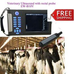 Wholesale Rectal Ultrasound Testing Pregnancy For Big Animals Veterinary Handheld Ultrasound Scanner EW B10V With Rectal Probe LV7