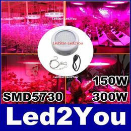 Wholesale UFO W Led Lamp Grow Full Spectrum Growing Plants Light W SMD5730 nm nm nm nm K for Aquarium Grow Box Tent