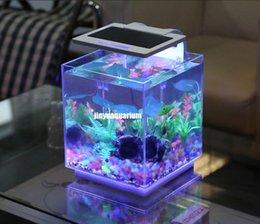Wholesale LED light aquarium plant grow fish tank landscape v v Mini nano white blue thermometer