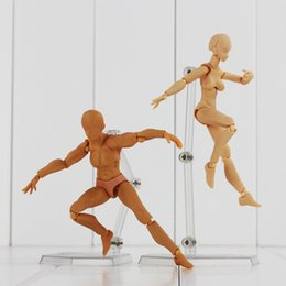 Wholesale High quality color figma BODY He she skin color cm Ferrite PVC Action Figure Figma Figure model doll