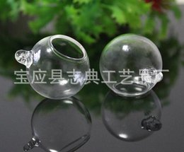 Wholesale 100pcs Dia mm open mm Mini view glass cover Crystal ornaments glass ball hood mini meat plant landscape glass cover hanging bottles