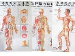 Wholesale 2016 color body acupuncture points chart Meridian points chart meridian chart three side front back chinese En