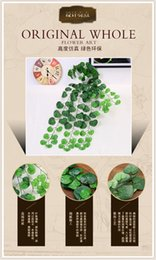 Wholesale Green Begonia supply highly realistic plant vines wall furnishings Wall plastics simulation rattan
