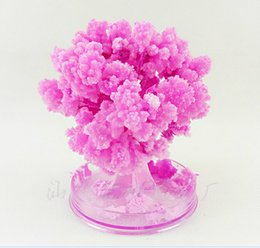 iWish New Visual 2017 Magical Artificial Grow Sakura Trees Christmas Growing Paper Tree Japanese Desktop Cherry Blossom Magic Kids Toys 2PCS