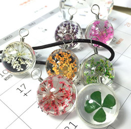 Wholesale 20MM Dandelion Real Seed Glass Bulb Necklaces Dry Flower Clover Bulb Pendant Necklace Jewelry with Leather Chain