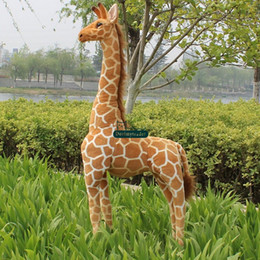 Wholesale Dorimytrader Real Pictures cm Huge Soft Stuffed Cute Large Plush Simulated Animal Giraffe Toy Nice Gift DY60313