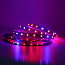 Wholesale 5050 M roll led m Led Plant Grow Strip Light Waterproof Non waterproof Flexible Strip Tape Light Red Blue Aquarium Hydroponic Plant