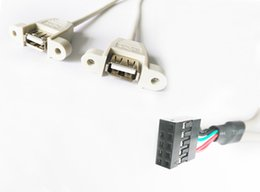 Wholesale 30CM Panel Mount Dual Bulkhead USB AF Motherboard Header to Dupont mm Assembly connecto Cable