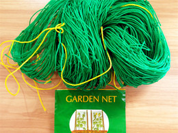 Wholesale Nylon Plant Support Trellis Netting X3 m Morning Glory Gourd Cucumber Climbing Net Mesh Nylon Net for Garden Use