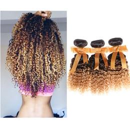 27 bouclés ombre en Ligne-3 paquets / lot Malaisien Ombre Extensions de cheveux Cheveux bouclés Kinky 1B # / 27 # 7A grade 100g / paquet