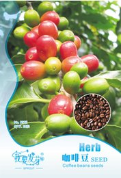 Wholesale View the coffee bean seed quality coffee beans courtyard planting easy type of package bags per