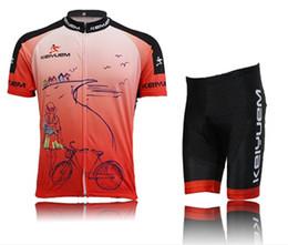 Cuissard vente à vendre-La vente chaude de nouvelles séries de Jersey de vélo de vélo de cyclisme de vélo de bicyclette de veste de vêtements de sport établit / Jersey / Shorts