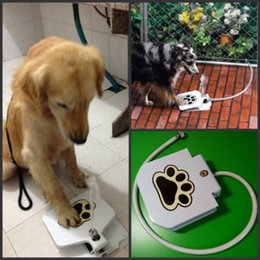 Wholesale Step Spray Doggie Puppy Dog Cat Pet Paw Water Drinking Fountain self feeder flow