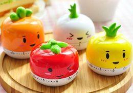 Hot Sale New Design Fruit Novelty Kitchen Timer Kitchen Helper Mini Kitchen Count Down Clip Timer Alarm 001#